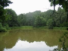 Horní rybník.